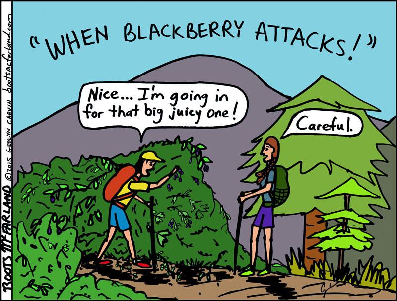 479-58E-BlackberryC