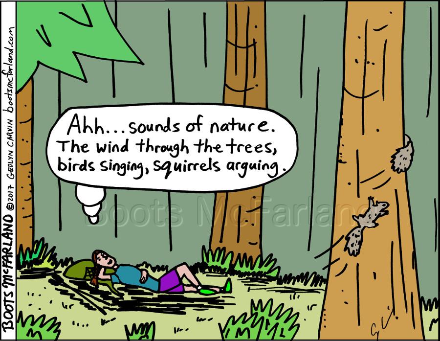 566-146E-Squirrels